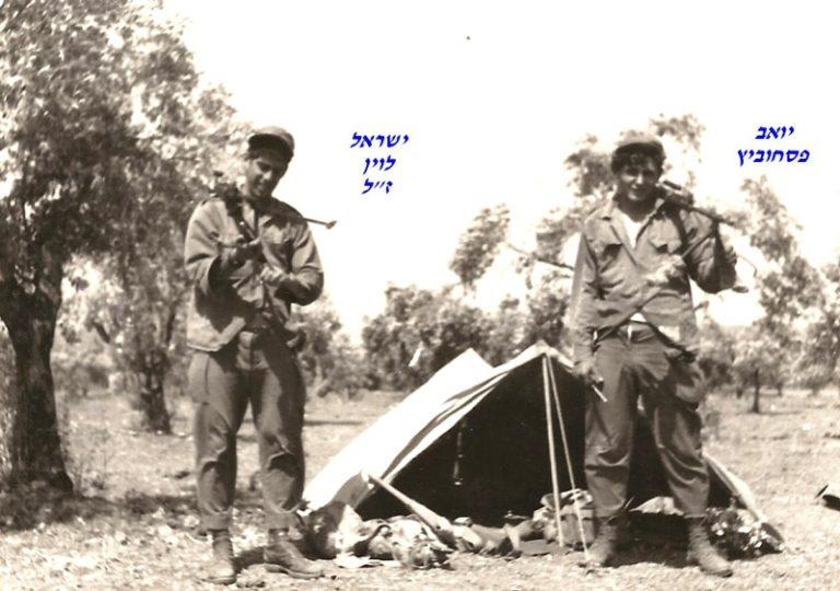 יואב פסחוביץ ישראל לוין ז ל
