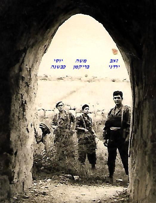 שקד אוגוסט 1965 ירדני בריקמן כבשנה
